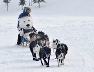 Carnaval d'hiver de Cochrane