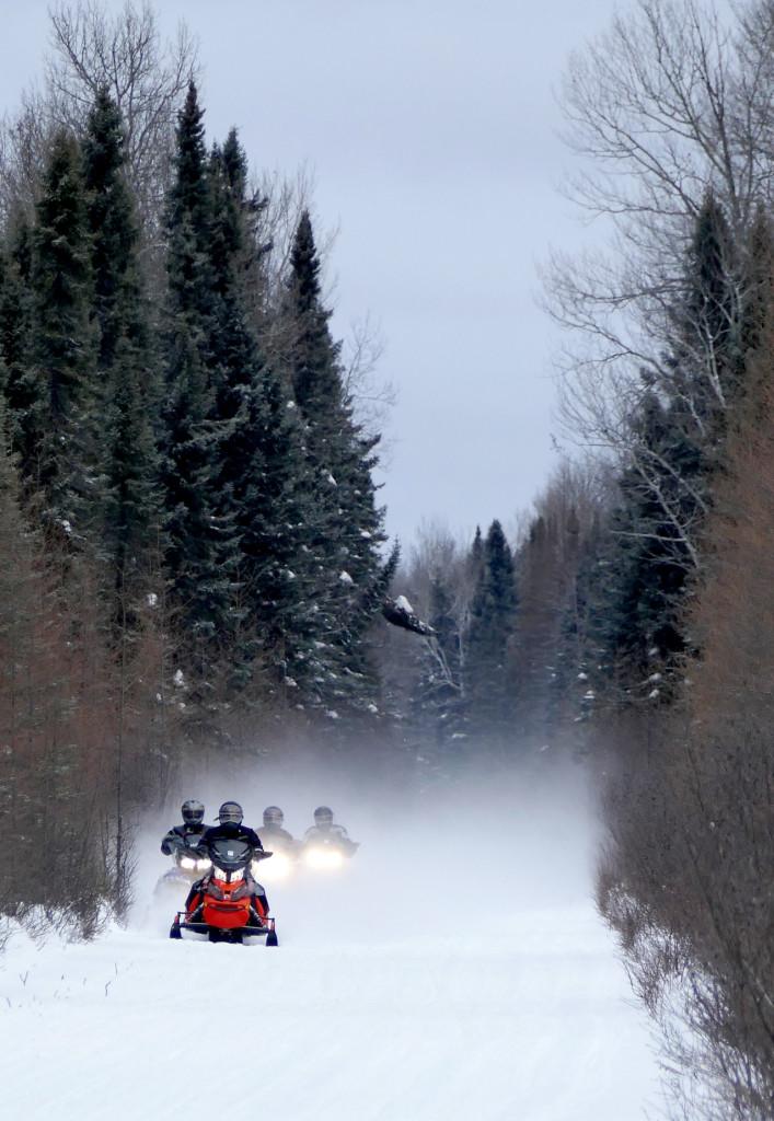 Des kilomètres de sentiers sans traverser une route... Photo : Yves Ouellet